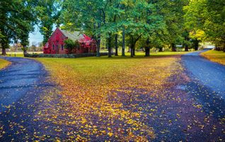 Бесплатные фото Gostwyck,Австралия,осень,дорога,парк,домик,деревья