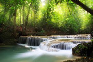 Фото бесплатно зелень, деревья, ручей