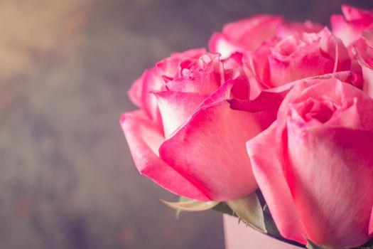Бесплатные фото розы,букет,бутоны роз,розовые
