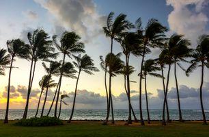 Бесплатные фото Остров Кауаи Гавайи,закат,пляж,море,пальмы,пейзаж