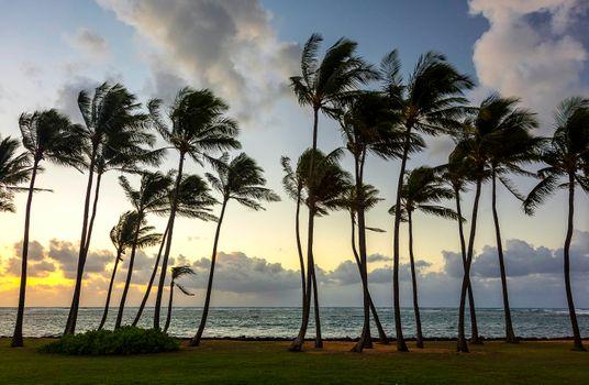 Заставки Остров Кауаи Гавайи, закат, пляж