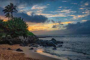 Фото бесплатно волны, пальмы, закат