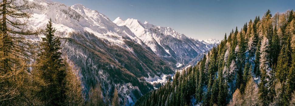 Заставки двойной,лес,монитор,горы,панорама,снег