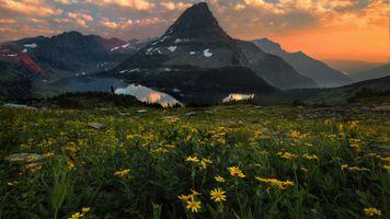 Цветущий луг и горы · бесплатное фото