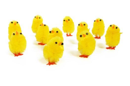 Фото бесплатно птица, группа, белый