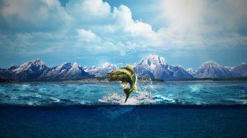 Заставки природа,естественный свет,море,морские монстры,рыба,горизонт,глубокое море