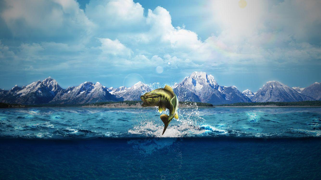 Фото бесплатно природа, естественный свет, море, морские монстры, рыба, горизонт, глубокое море, горы, гора, слоновые облака, вид сплита, рендеринг