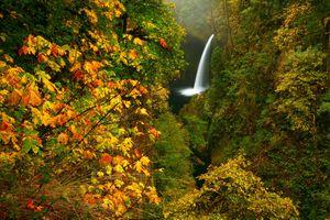 Фото бесплатно Водопад Метлако, ущелье Игл-Крик, Колумбия