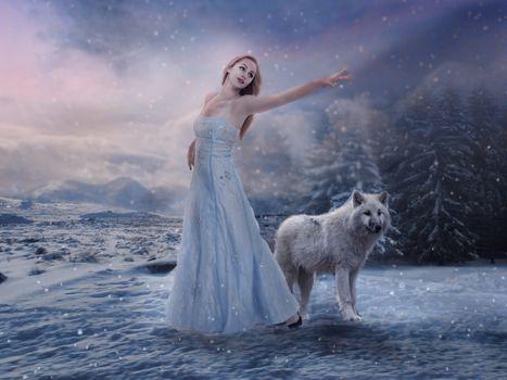 Фото бесплатно девушка и волк, зима, снег