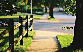 Заставки Тротуар, солнце, деревья