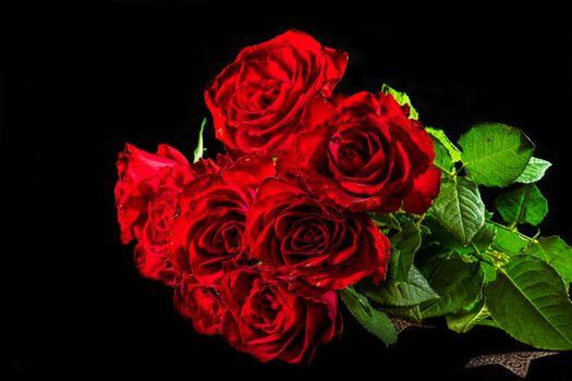 Photo free blossoming, flower arrangement, floral