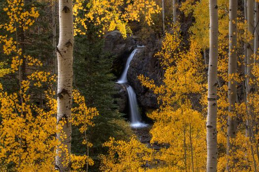 Autumn waterfall in Aspen Forest · free photo
