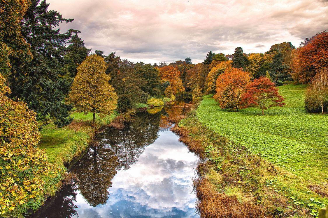 Фото бесплатно отражение, деревья, осенние краски - на рабочий стол