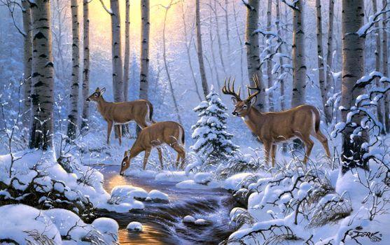 Бесплатные фото олени на водопое,зима,олени,речка,лес,деревья,природа,пейзаж,водопой,изобразительное искусство,картина,Derk Hansen