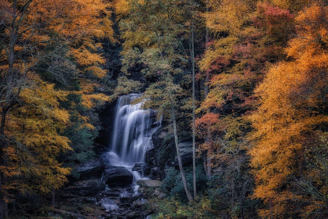 Фото бесплатно осень, водопад, скалы, лес, деревья, пейзаж, пейзажи
