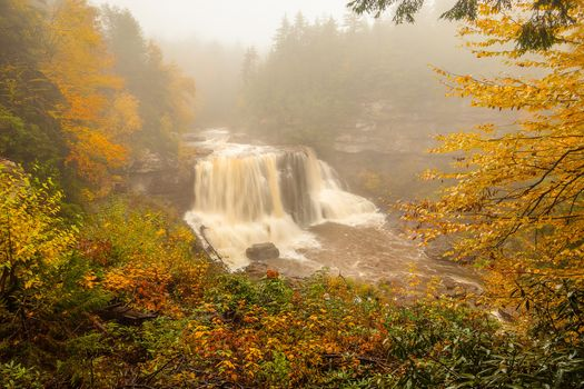 Photo free waterfall, forest, autumn leaves