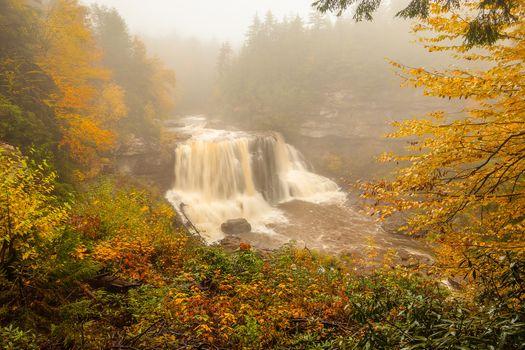 Фото бесплатно водопад, лес, осенние листья