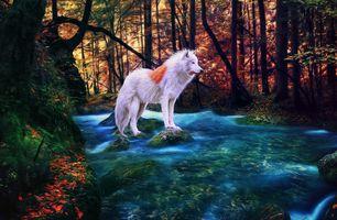 Бесплатные фото осень,река,лес,деревья,камни,белый волк,фантазия