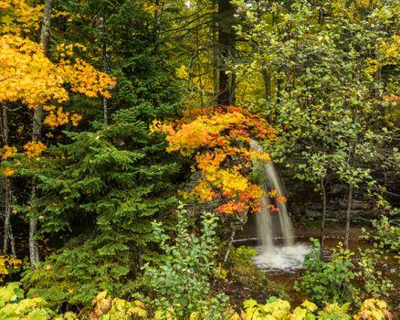 Заставки осень,водопад,лес,деревья,природа,пейзаж