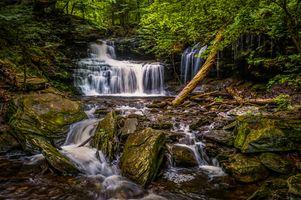 Бесплатные фото Государственный парк Рикеттс Глен,Пенсильвания,Ricketts Glen State Park,Pennsylvania,водопад,лес,скалы