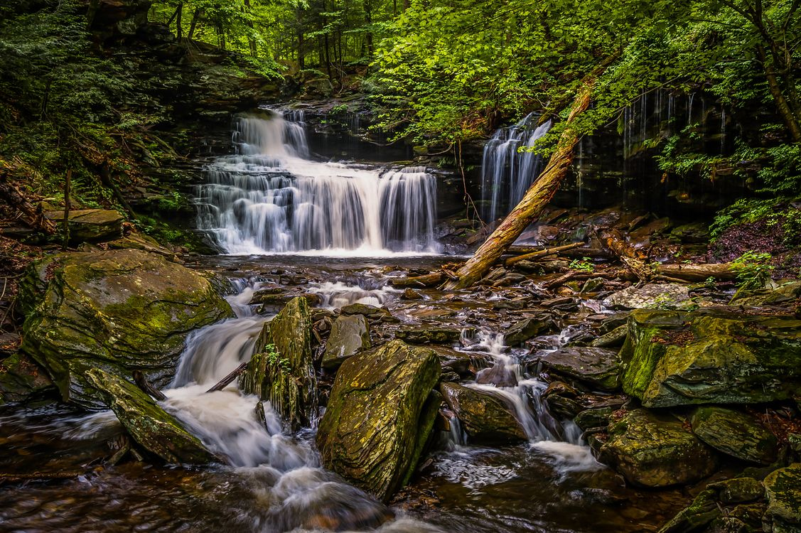 Free photo landscape, Ricketts Glen State Park, waterfall - to desktop