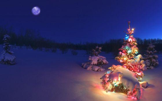 Фото бесплатно Рождество, гирлянды, Луна