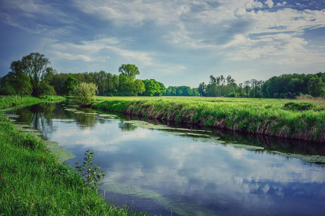 картинка поле лес и речка фиброма это новообразование