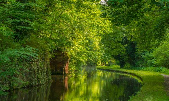 Бесплатные фото Стаффордширский и вустерширский канал в Кинвере,Англия,лес,деревья,природа,пейзаж