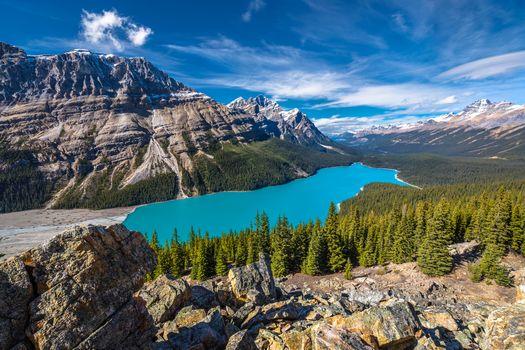 Фото бесплатно лес, национальный парк банф, канада