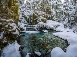 Бесплатные фото зима,речка,водопад,лес,деревья,камни,скалы