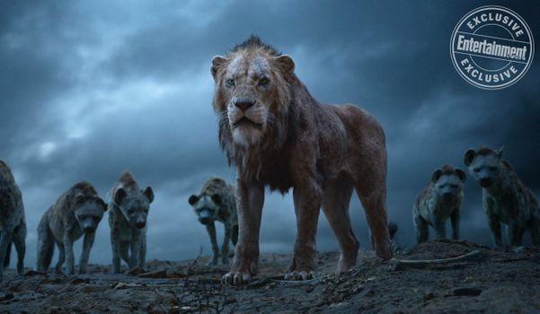 Заставки Король лев,Шрам,гиены,герой мультфильма,злодей