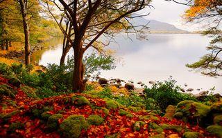 Заставки осень, озеро, пейзаж