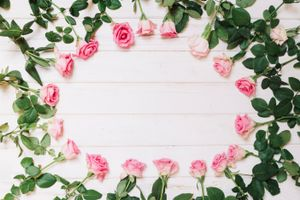 Photo free decor, roses, buds
