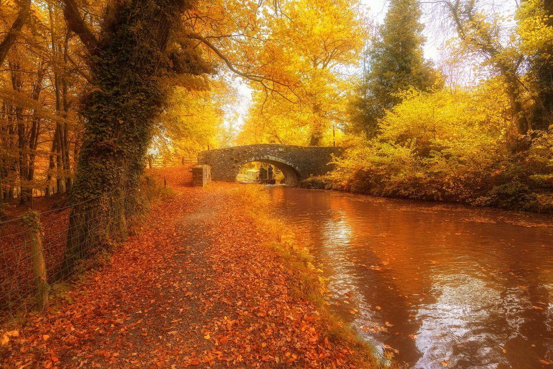 Фото Уэльс Соединенное Королевство осень - бесплатные картинки на Fonwall