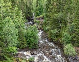 Бесплатные фото лес,деревья,река,течение,домик,камни,природа