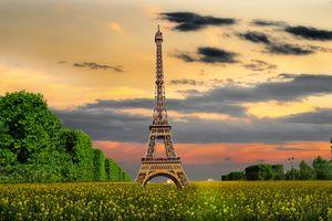 Заставки поле, Эйфелева башня, деревья