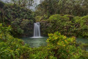 Бесплатные фото Национальный парк Халеакала,Maui,Pua a Ka a State Wayside Park,водопад,водоём,деревья,природа