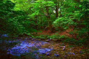 Фото бесплатно камни, пейзаж, природа