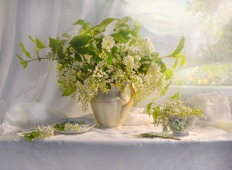 Photo free still life, flowers, picture