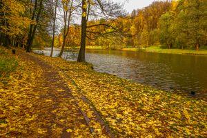 Фото бесплатно пейзаж, вершина Царицынского пруда, усадьба