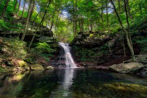 Фото бесплатно ручей, лес, скалы