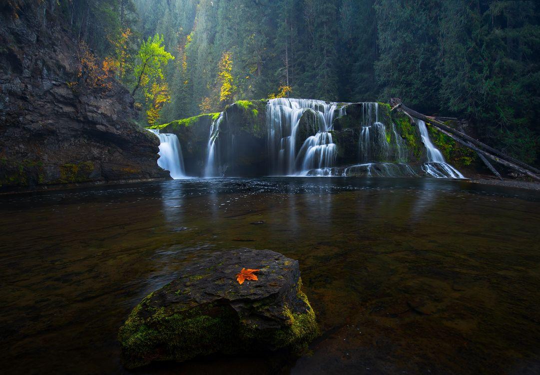 Фото бесплатно Lower Lewis falls, осень, река - на рабочий стол