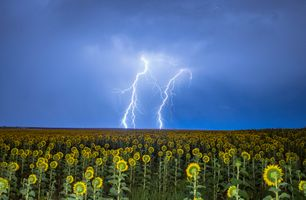 Фото бесплатно молния, гроза, поле