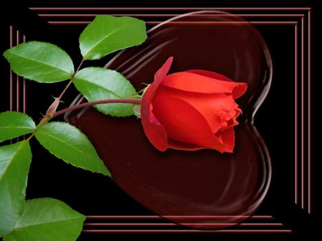 Rose in a frame with a heart · free photo