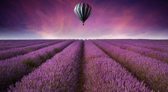 Photo free air, balloon, field