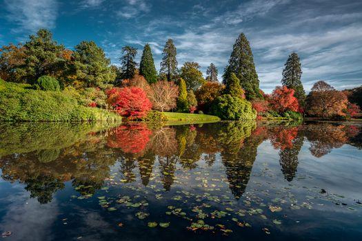 Заставки озеро, осень, парк