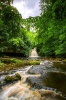 Фото бесплатно поток, водопад, деревья
