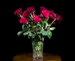 Photo free flora, vase, black background