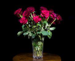 Фото бесплатно флора, ваза, черный фон