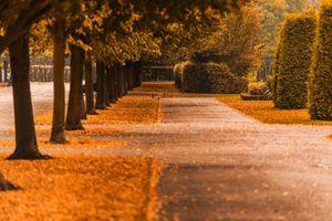 Заставки осень, красочный, цвета